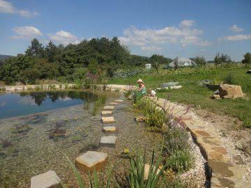 Tvorba prírodných záhrad podľa princípov permakultúry @ ekocentrum ArTUR | Hrubý Šúr | Slovensko